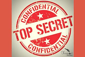 Can you put your security clearance on your resume